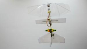 Delfly robot