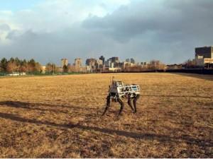 De robot van Boston Dynamics AlphaDog