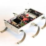De autonome robot Zebro